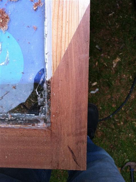 houtrot reparaties tijdens
